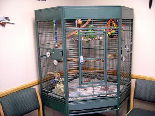 corner cage